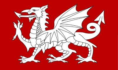 white dragon flag